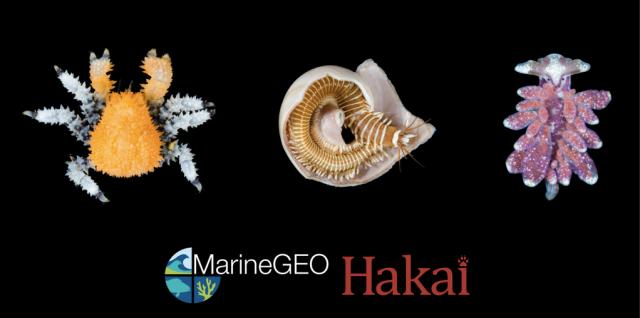 MarineGEO-Hakai Bioblitz